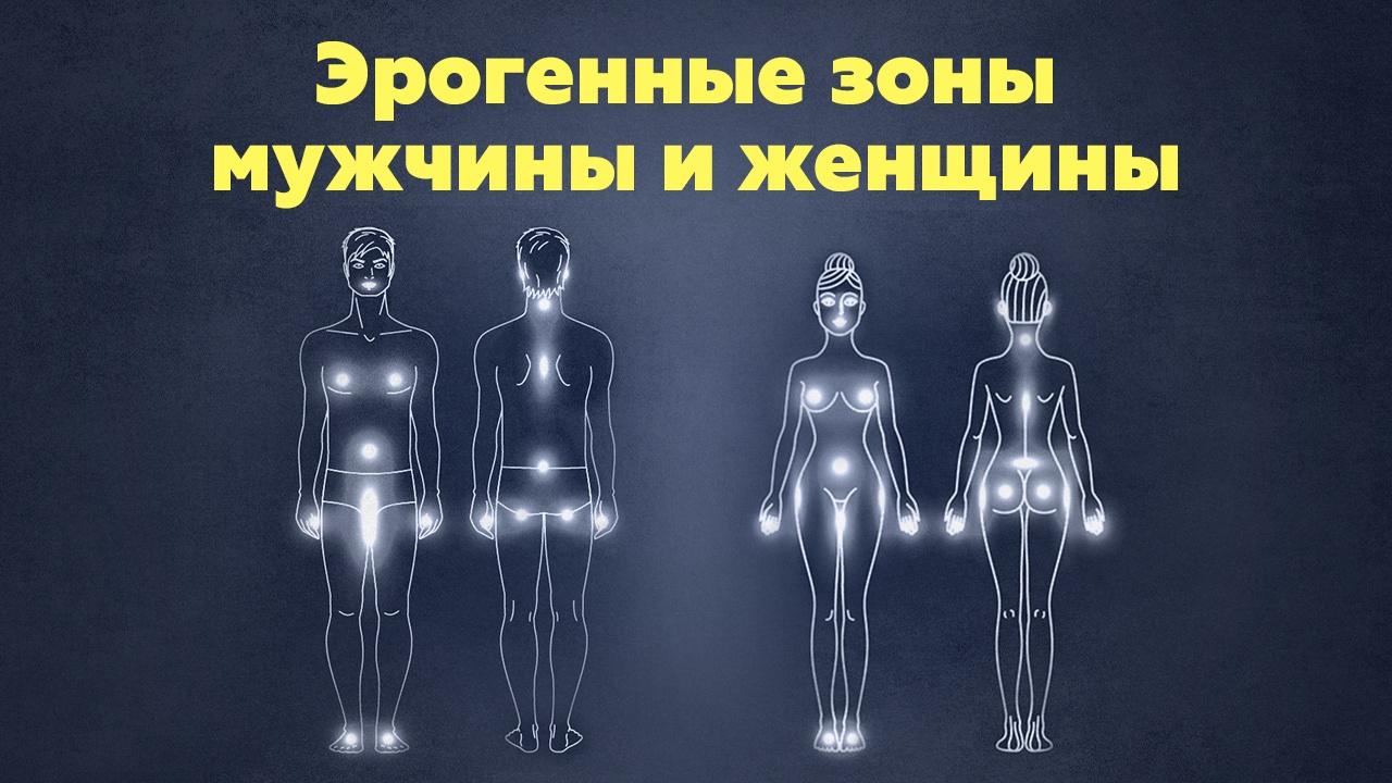 Филипп Литвиненко Эрогенные зоны мужчины и женщины
